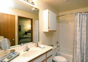 ZJ - Bordeaux Hall Bathroom APT